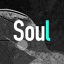 Soul軟件 v3.40.0