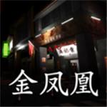 孙美琪疑案金凤凰完整版 v1.0